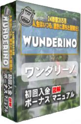 ワンダリーノカジノ初回入金ボーナスマニュアルEBOOK